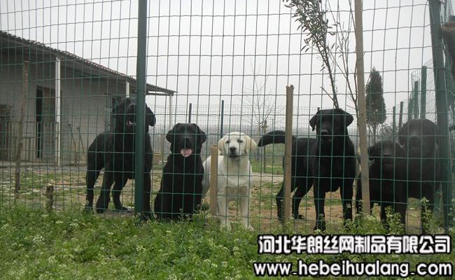 养殖围栏网